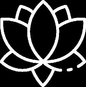 Meditación y Mindfulness Online